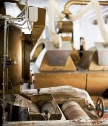 chocolate factory- conching machine