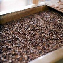 chocolate factory- shelling machine/ winnower