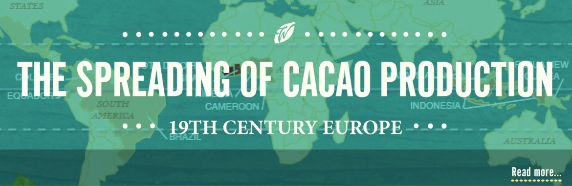 history-of-cacao-spreading-cacao-production