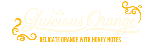 Luscious Orange, Baracoa 65 Dark Chocolate - Delicate orange with honey flavours - 26g
