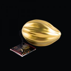 mini golden pod dark chocolate sea salt caramel