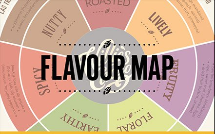 Chocolate Flavour Map
