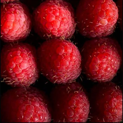 Willie's Cacao, fresh raspberries - Natural